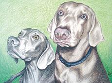 Brutus and Sammy Portrait